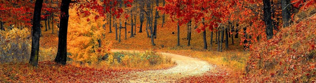 Durchatmen  -  der Herbst ist da....